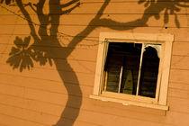 Eine alte Hütte auf Maui im Sonnenuntergang by Andy Fox