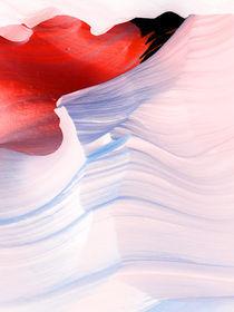 pink flamingo rock von Horst Hammerschmidt