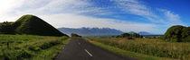 A Road to Paradise by Raz Shwaizer