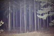magic forest von Sanja Marusic