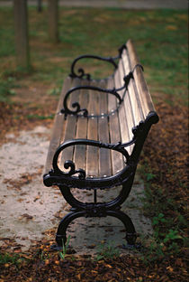 Park Bench, Atlanta von Greg Wright