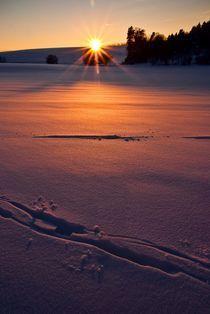 Deutschland / Germany 02 - Winter Sonnenuntergang / Wintersunset von Johannes Ehrhardt