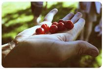 Cherries by Lisa Claesson