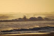 Surf-atardecer