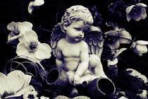 Little one's garden by merla-merula