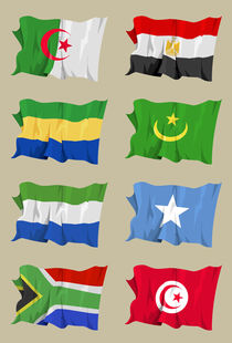 Eight African flags von William Rossin