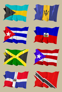 Eight Caribbean flags von William Rossin