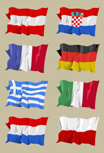 Eight European flags von William Rossin