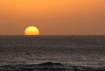 beach sunset by mariana clotta