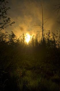 The Morning Sun by orendorffknight