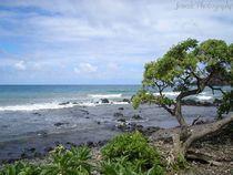 East-coast-of-maui-by-jenesisphotography