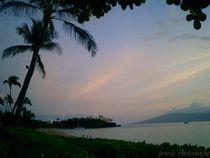 Maui Luau von Jennifer Jenesis Photography