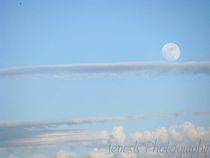 The-setting-moon-by-jenesisphotography