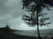 rain drops by jagriti