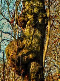 Tree by Maks Erlikh