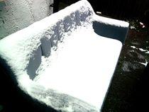 Snowy by Dorottya Sajben