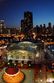Chicago von Dieter Decuypere