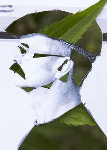 Robin Hood by Reiner Poser