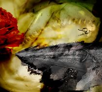 Posthuman  von Elod Istvan Raduly