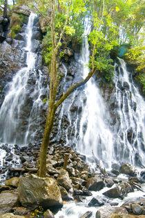 cascada by Ricardo Anderson