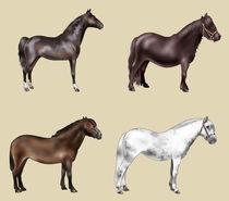 Four-horses