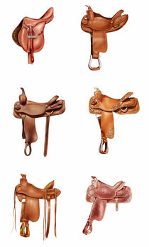 Six saddles von William Rossin