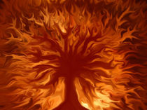 Tree of Life by Peter Herold