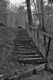 stairs by Jolanta Pawlicka