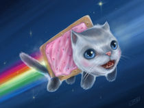 Nyan Cat (Pop Tart Cat)  von J.R.  Barker
