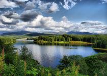 Loch Laggan by sandra cockayne