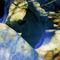 Idyllwild-grottos-magic-carvings-hi