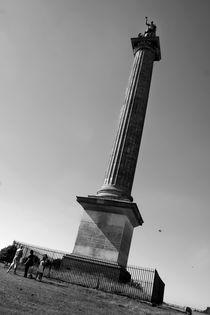 Blenheim Column by Jason Grain