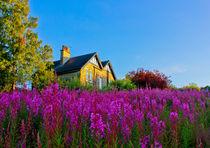 Prairiehouse