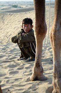 The Young Camel Rider von saptak ganguly