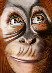 Monkey Monkey by Gabriela Wendt