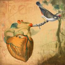 Corazón salvaje. von joseloren