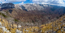 Panorama from Golic by Ivan Coric