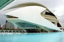 Valencia, Palau de les Arts 1 von Frank Rother