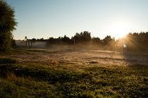 The rising sun by Maksim Kuzmin