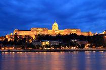 Buda Castle by Gustavo Oliveira
