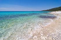 Sunny beach by Ivan Coric