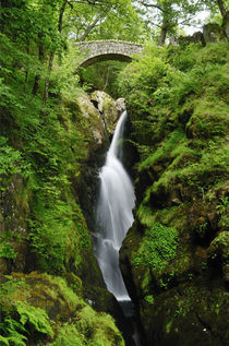 Aira Force Waterfall, Cumbria by Craig Joiner