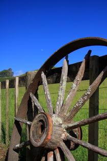 Wheel Of Time by Raz Shwaizer