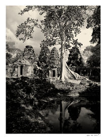Tree at Banteay Kdei by Eric deVries