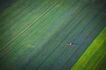 Baloon 003 von Marek Mosinski