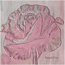 Sweet Pink rose  von Christine Bässler