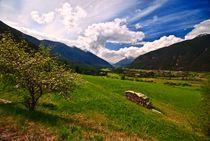 Österreich / Austria 01 - Sicht auf die Berge / A view to the mountains von Johannes Ehrhardt