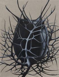 Among the Thorns by Jonathan Huitt