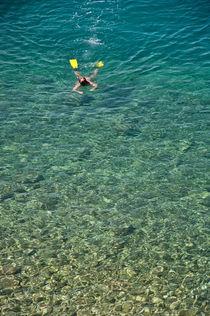 The big swim by Dana Marza