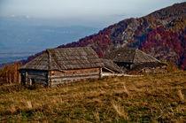 Wooden country house von Dana Marza